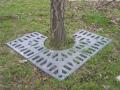 Tree grates I. - Brno