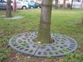 Tree grates II. - Brno